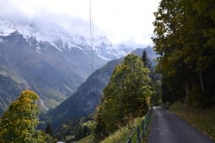 Walk in the Alps