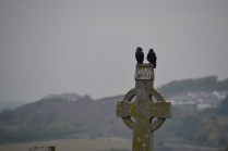 Ravens on a celtic cross