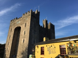 Bunratty Castle & Dirty Nelly's in Shannon