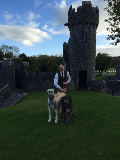 Irish wolf hounds at Ashford Castle