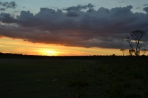 Sunset over the plain