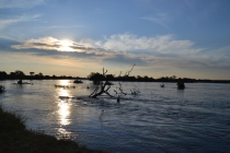 Late afternoon on the Zambezi