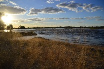 Zambezi river at sunset