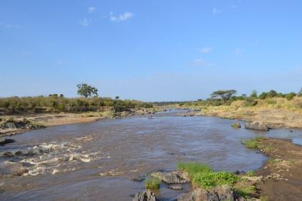 The Mara River