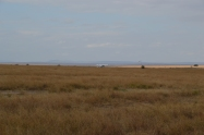 Airstrip in the middle of the Mara