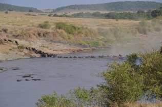 Frantic crossing with hippos not far away