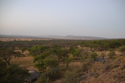 View of our luxury tents in the Serengeti