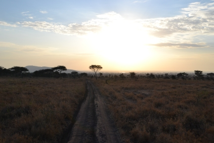 Sunrise over the Serengeti