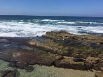 Shores of La Jolla
