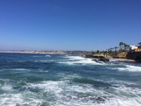 Shores of La Jolla