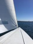 Sailing on Mission Bay