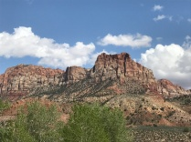 First views in Zion NP