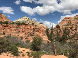 Amazing layers of rock