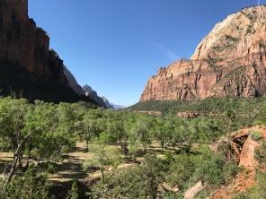 River valley through the canyon